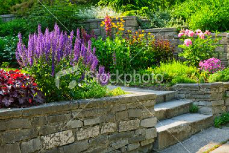 stock-photo-18925148-garden-with-stone-landscaping